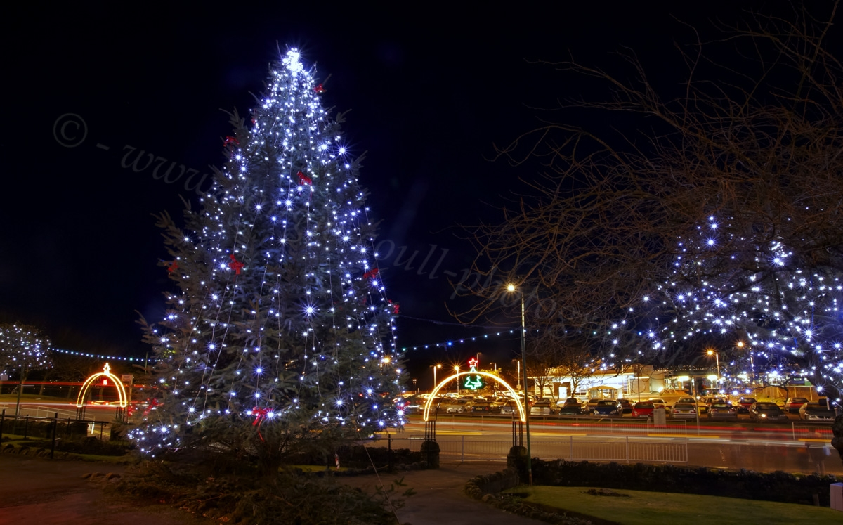 Christmas Lights Contractors